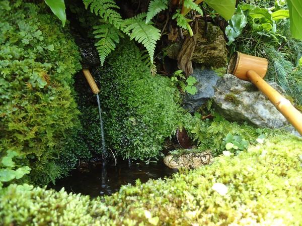 Rendez Vous aux Jardins 2018 -Jardin de Cabour