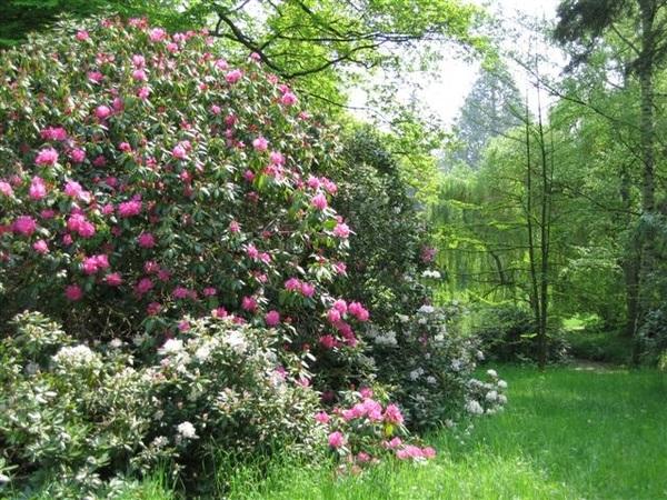 Rendez Vous aux Jardins 2018 -Le domaine de Windeck