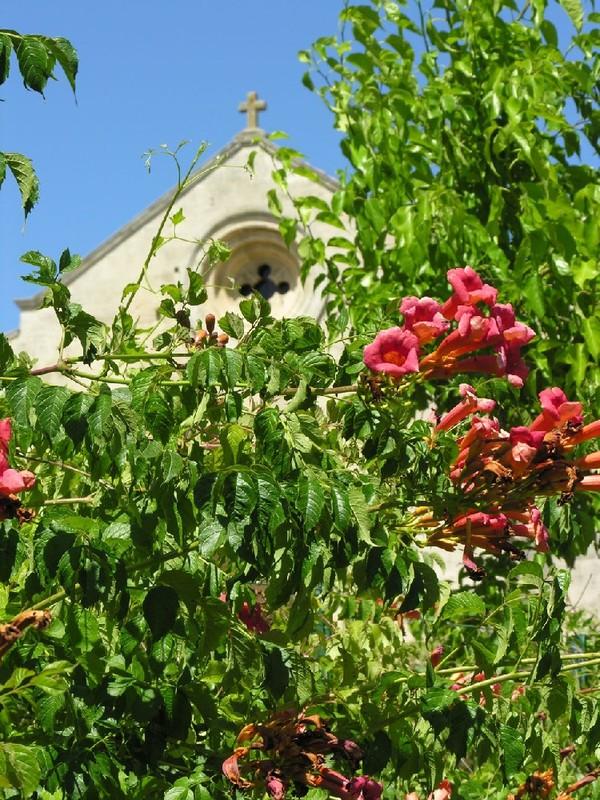 Rendez Vous aux Jardins 2018 -Salagon, musée et jardins