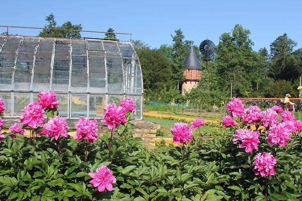 Journées du patrimoine 2017 - Jardin Potager à Bonnétable