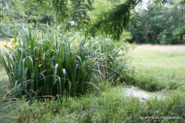 Rendez Vous aux Jardins 2018 -Les jardins du château perdu