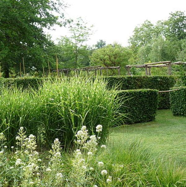 Crédits image : jardins de la régie