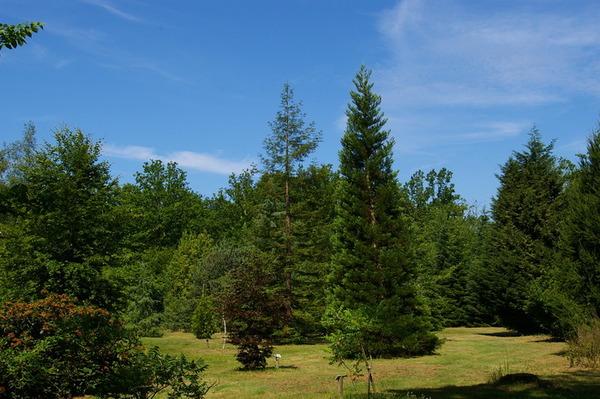 Journées du patrimoine 2017 - Visites libres de l'Arboretum