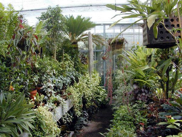 Journées du patrimoine 2017 - Visite guidée du jardin botanique