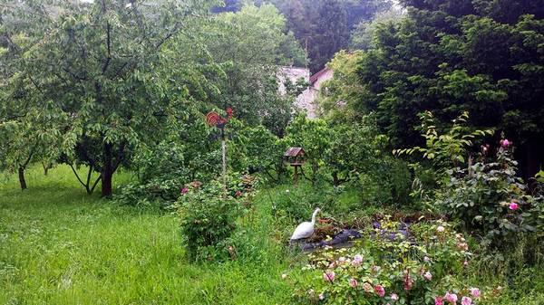 Rendez Vous aux Jardins 2018 -Jardin du presbytère