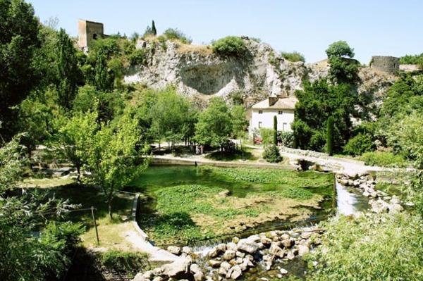 Rendez Vous aux Jardins 2018 -Jardin du musée-bibliothèque Pétrarque