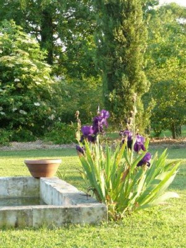 Crédits image : © Jardin de Ponome