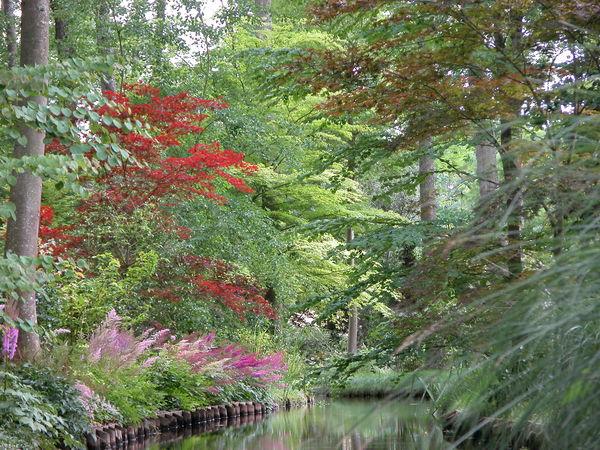 Rendez Vous aux Jardins 2018 -Jardin Arboretum d'Ilex