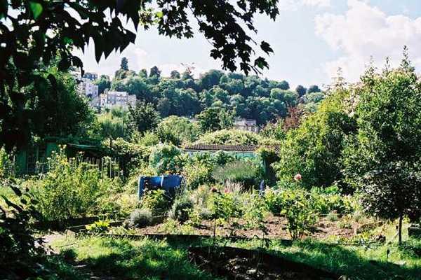 Journées du patrimoine 2020 - Visite libre des jardins familiaux de la pointe de l'île