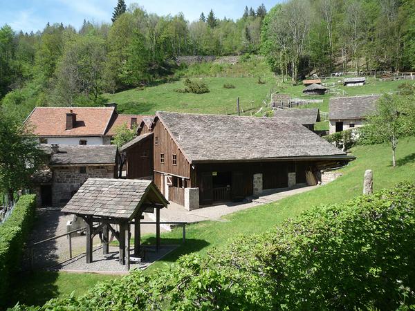 Journées du patrimoine 2017 - Visites libres et guidées des expositions temporaires et permanentes