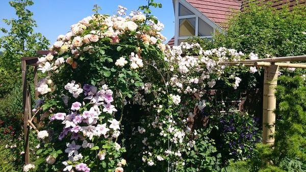 Rendez Vous aux Jardins 2018 -Villa Flora