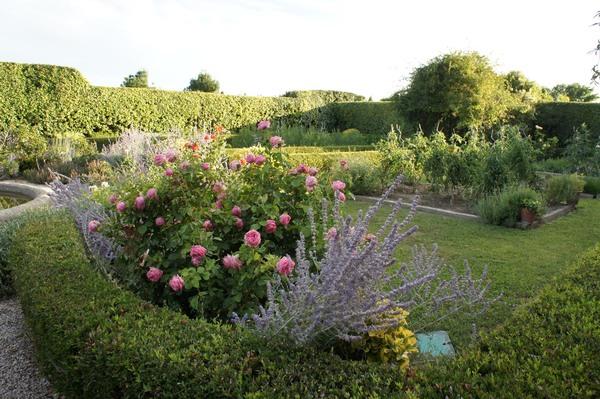 Rendez Vous aux Jardins 2018 -Les jardins de Payan