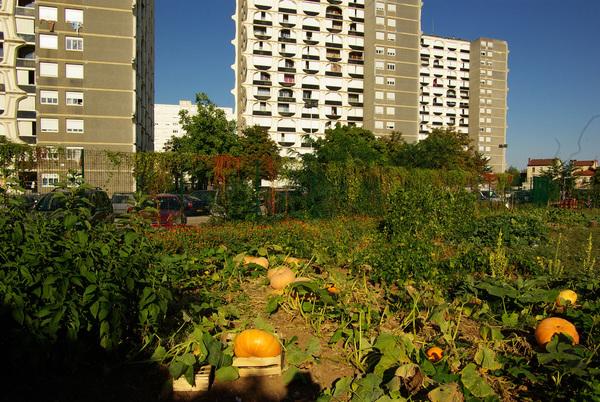 Rendez Vous aux Jardins 2018 -Jardin partagé du pré SANTY