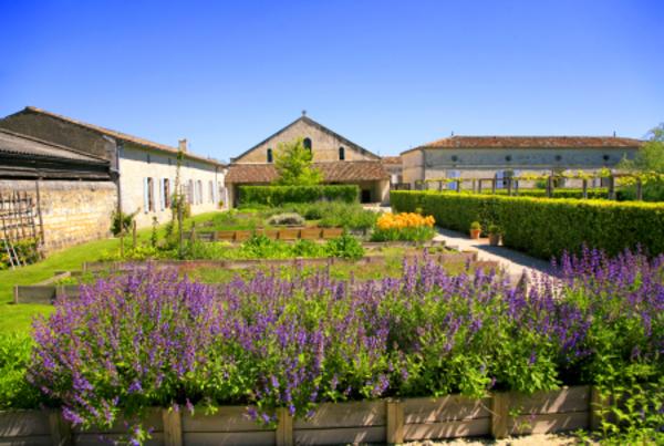Rendez Vous aux Jardins 2018 -Jardin médiéval de l'Hôpital des Pélerins