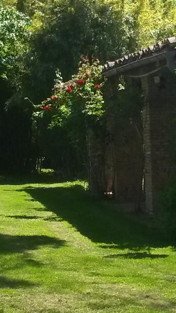 Rendez Vous aux Jardins 2018 -Château des Bourgarels, 316 route de Grazac, 31340 Mirepoix sur Tarn