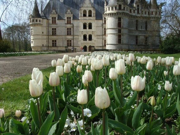 Journées du patrimoine 2017 - La renaissance du château
