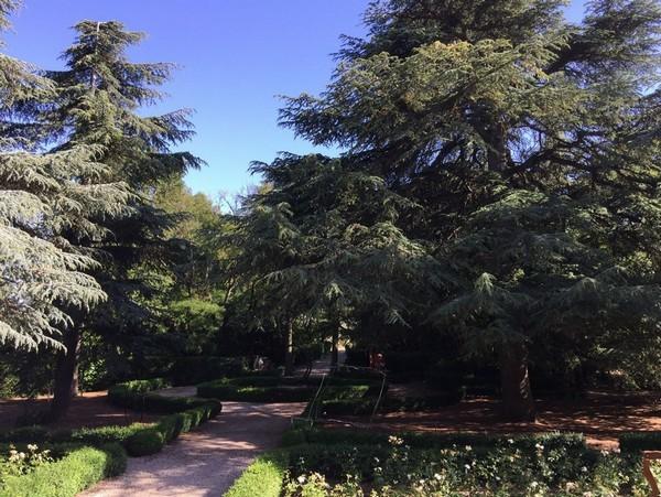 Rendez Vous aux Jardins 2018 -Château de Bosc