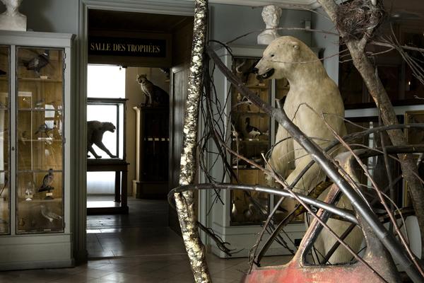 Nuit des musées 2019 -Musée de la chasse et de la nature