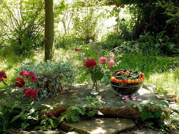 Rendez Vous aux Jardins 2018 -Semences Partage