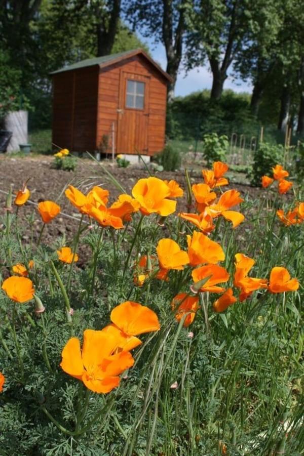Rendez Vous aux Jardins 2018 -Jardins familiaux