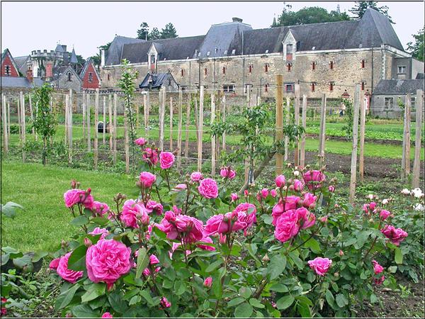 Rendez Vous aux Jardins 2018 -Le potager du château