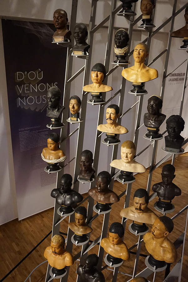 Nuit des musées 2019 -Musée de l'Homme