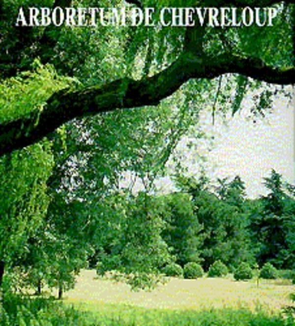 Rendez Vous aux Jardins 2018 -Arboretum de Chèvreloup