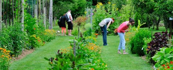 Journées du patrimoine 2017 - Visite du jardin aux Plantes parfumées