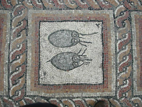 Journées du patrimoine 2017 - Découverte du site archéologique de Montcaret