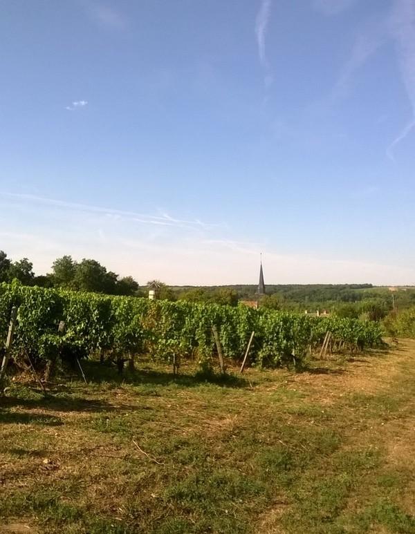 Crédits image : Service patrimoine vallée du Cher et du Romorantinais