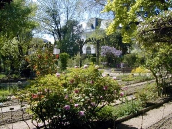 Rendez Vous aux Jardins 2018 -Jardin botanique de la faculté de pharmacie