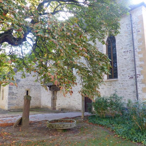 Crédits image : Ville de Mulhouse