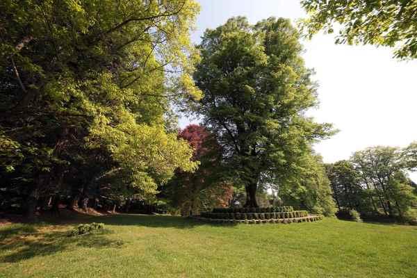 Crédits image : Arboretum du château de Neuvic d'Ussel © Jean Tigé