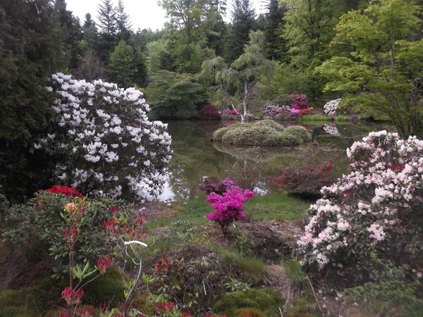 Rendez Vous aux Jardins 2018 -Jardin botanique de Gondremer