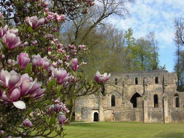 Crédits image : Trois-Fontaines-L-Abbaye © Aurélie Boileau
