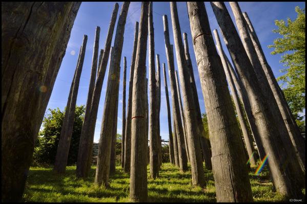Crédits image : © Doume Pougne-Hérisson - Jardin du Nombril - La Fôret Sans Tête