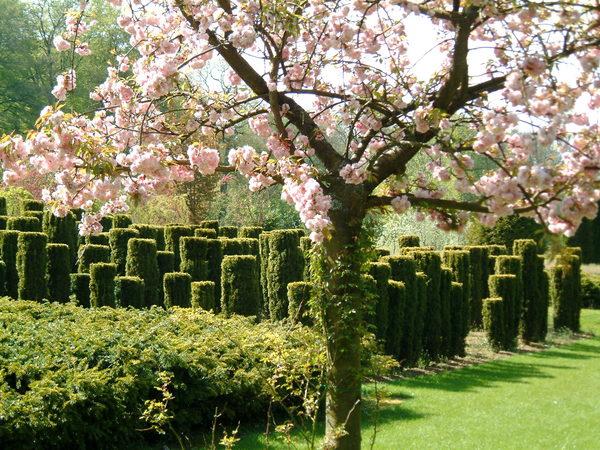 Rendez Vous aux Jardins 2018 -Les Jardins de Séricourt