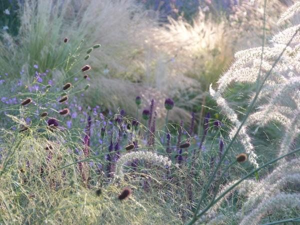 Rendez Vous aux Jardins 2018 -Le jardin champêtre