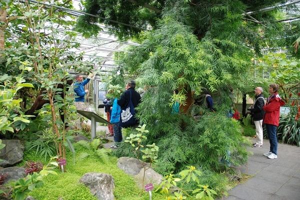 Rendez Vous aux Jardins 2018 -Jardin du conservatoire botanique national de Brest