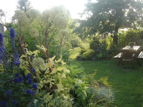 Rendez Vous aux Jardins 2018 -Le jardin d'astree