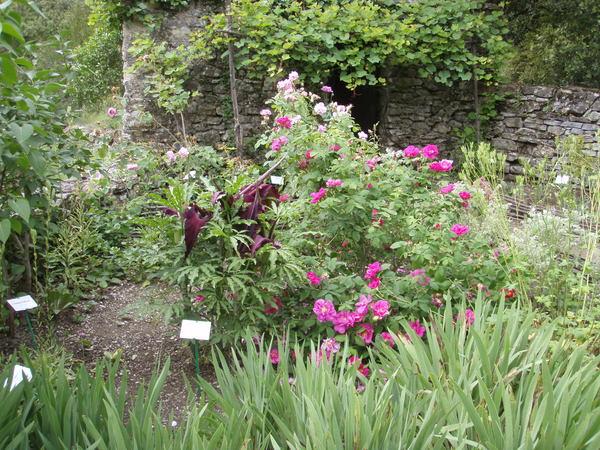 Rendez Vous aux Jardins 2018 -Jardins ethnobotaniques de la Gardie