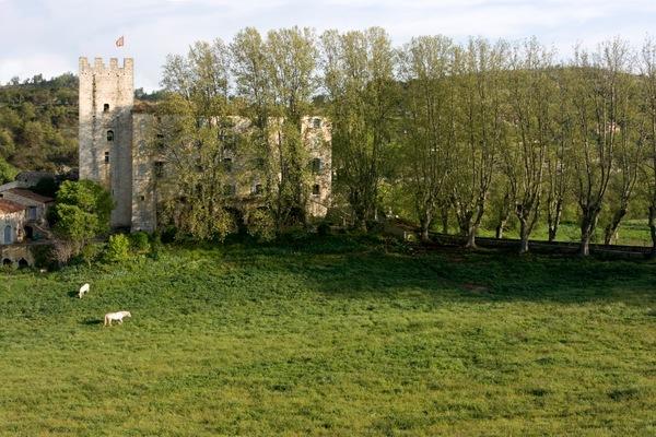 Journées du patrimoine 2018 - Château d'Esparron