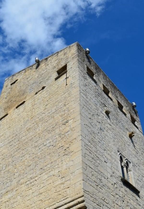 Crédits image : Image : vue sur le sommet de la tour ©service Patrimoine OSM