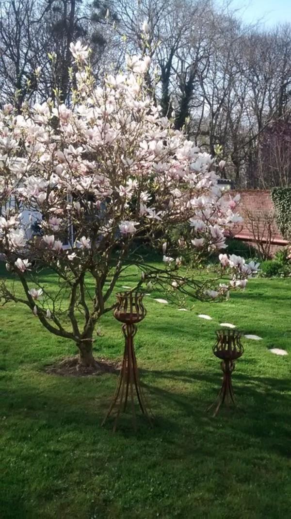 Rendez Vous aux Jardins 2018 -Le jardin de Caroline