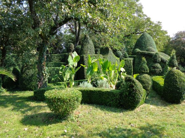 D couverte du jardin et des projets for Jardin 86