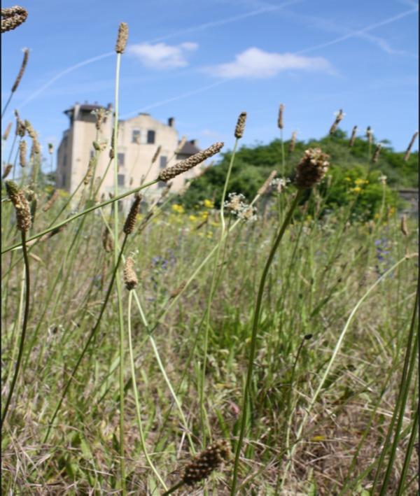 Journées du patrimoine 2018 - Visite commentée du site de l'ancienne gare de déportation de Bobigny