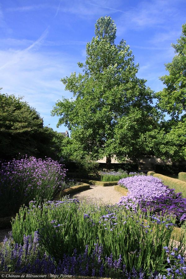 Rendez Vous aux Jardins 2018 -Les jardins du nouveau monde