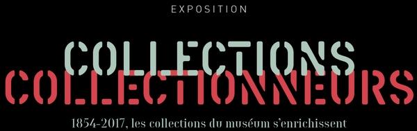 Crédits image : Département de La Réunion - Museum d'histoire naturelle