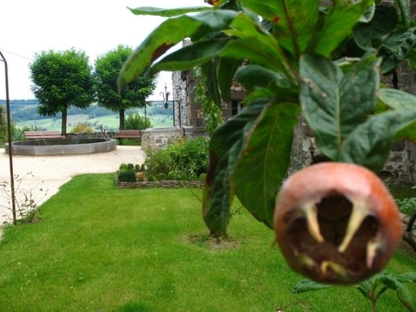Rendez Vous aux Jardins 2018 -Le jardin de marie