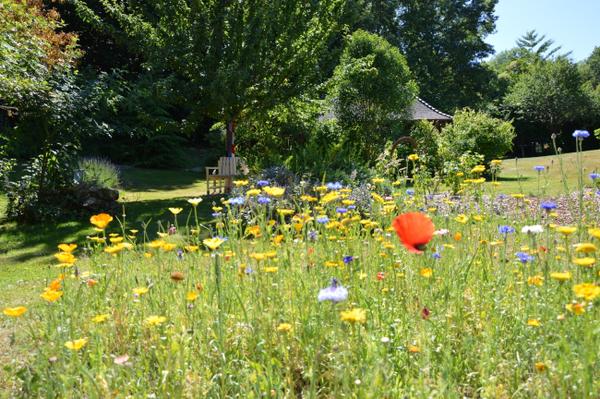 Rendez Vous aux Jardins 2018 -Jardin des Sens, Passerelle entre les générations